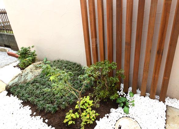 和室の窓から見える坪庭