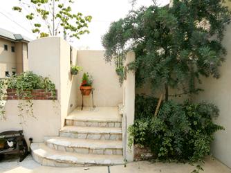 毎日通る階段はシンボルツリーの成長を感じながら