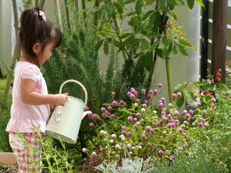 たくさんの草花はお庭を癒しの空間に