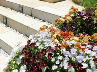 """アプローチの花壇には、ご家族で季節の花を"""""""