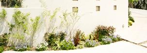 植物に囲まれたモダンガーデンエクステリア