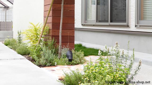 お庭に向かうアプローチにかわいい植栽スペース