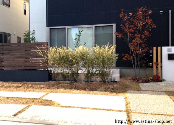 建物とも調和し、ウッドや植物のコントラストが引き立つ